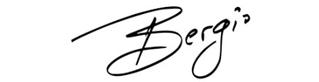 Bergio Jewelry Designer